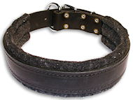 Schutzhund Padded Leather dog collar with thick felt
