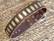 Gorgeous Wide Leather Dog Collar With Plates for All Breeds
