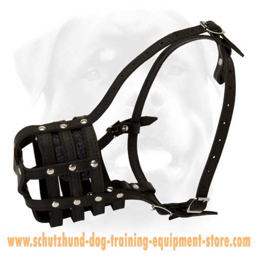 Great Stylish Leather Basket Dog Muzzle