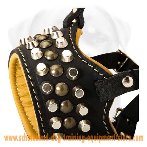 Admirable Leather Dog Muzzle