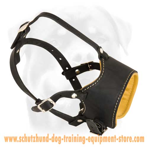 Fantastic Leather Dog Muzzle