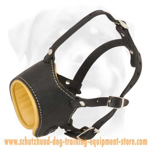 Great Nappa Padded Leather Dog Muzzle
