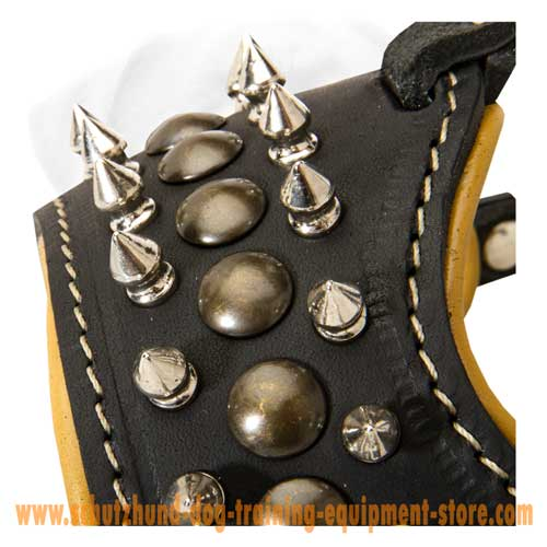 Superior Leather Dog Muzzle