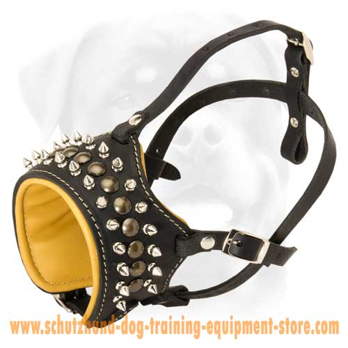 Great Leather Dog Muzzle