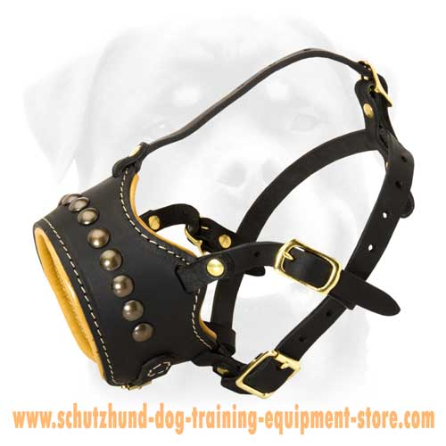 Leather Dog Muzzle For Stylish Dogs