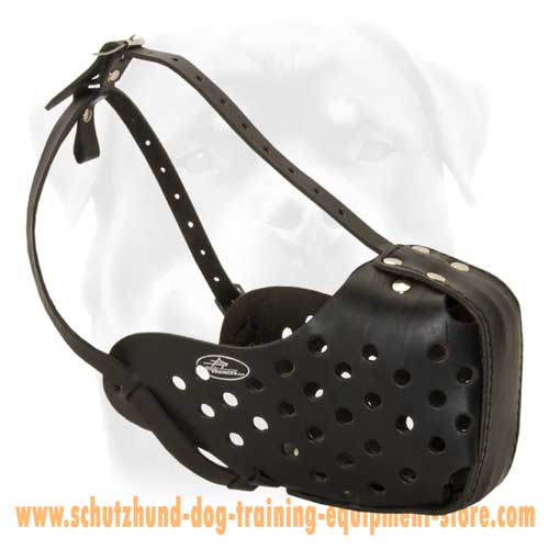 Leather Dog Muzzle For Safe Walking