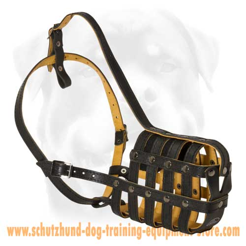 Leather Dog Muzzle Of A Superior Quality