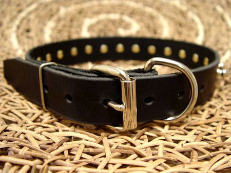 Small Spiked Dog Collar for DOG puppy