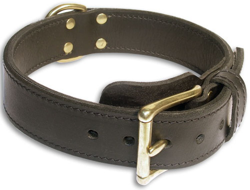 Double Layer Collar 1 3/4 inch for Schutzhund Training