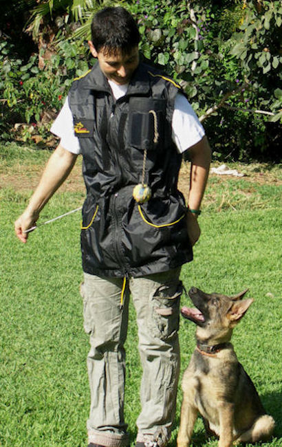 Ultimate Dog Training Vest-Dog trainer Supplies