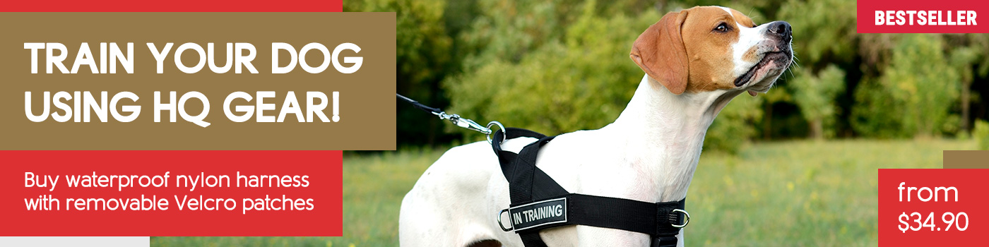 Nylon Harness for Schutzhund Dogs