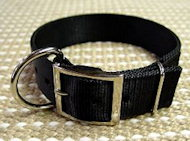 2 Ply Nylon Dog Collar Schutzhund Training